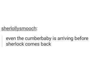 sherlock fandom, cumberbabes, and sherlock hiatus image