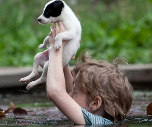 dog, boy, and animal image