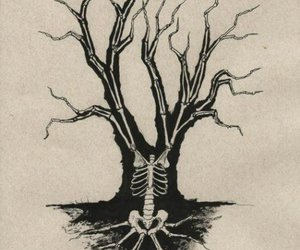 tree, skeleton, and black and white image