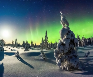 beautiful, northern light, and snow image