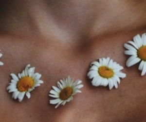 boho, grunge, and daisies image