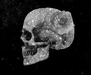 skull, stars, and wallpaper image
