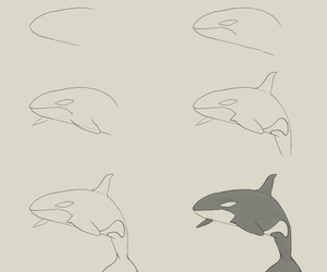 wale and how to draw image