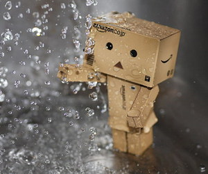 danbo and rain image
