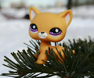 lps image