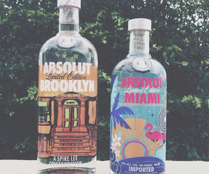 vodka, Miami, and drink image