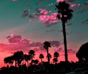 pink, love, and california image