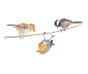 art, beauty, and bird image