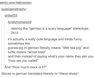adorable, funny, and german image