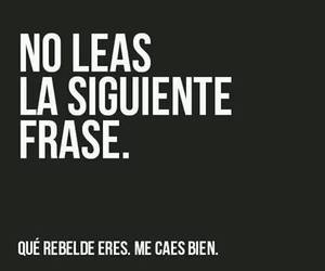 frases, rebel, and frase image