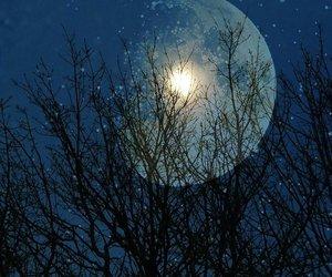 moon, night sky, and sky image