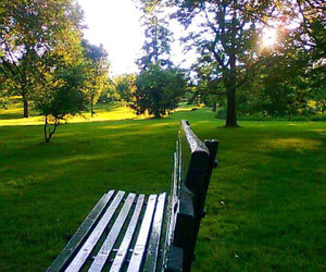bench, lonely, and trees image