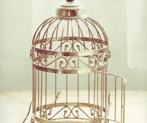 cage, vintage, and bird image