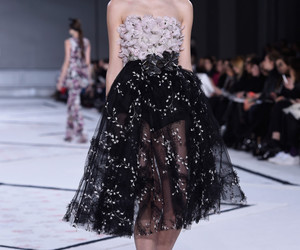 Best, fashion, and haute couture image
