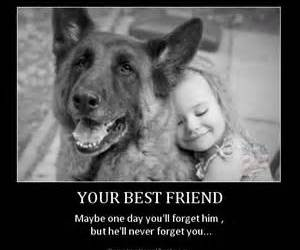 best friend, love, and bff image