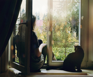 cat, girl, and window image