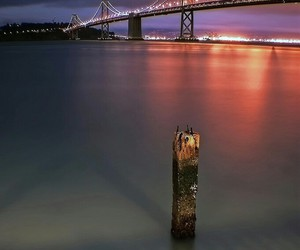 bridge, san francisco, and usa image