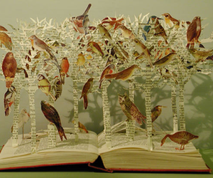 birds, book, and Paper image