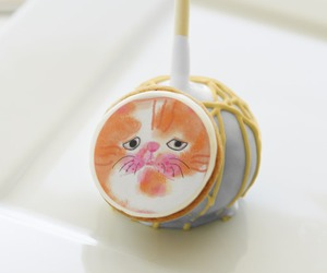cakepop, cat, and cute funny image