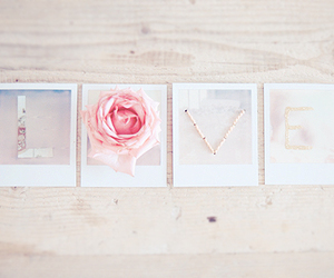 love, rose, and pink image