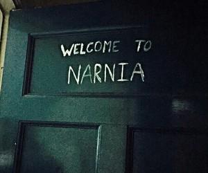 narnia, grunge, and door image