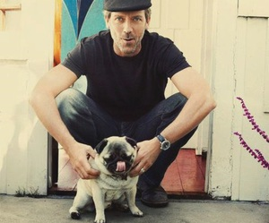 hugh laurie, pug, and house image