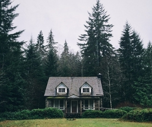 house, forest, and grunge image