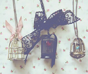 necklace, cage, and vintage image