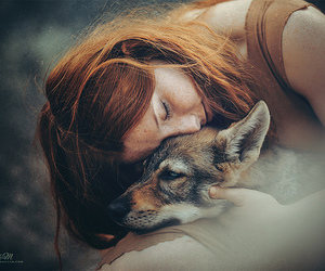 wolf, ginger, and girl image