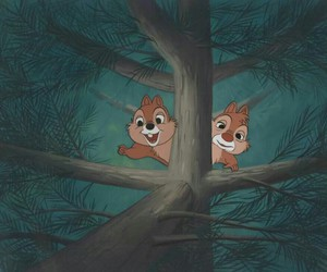 disney, tree, and chip and dale image