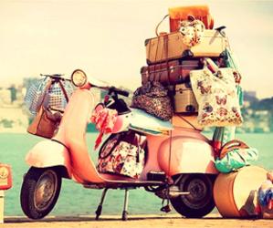 travel, pink, and bag image