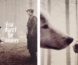 wolf, thomas sangster, and game of thrones image