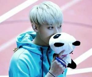 exo, tao, and panda image