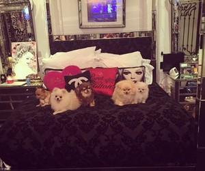 bedroom and paris hilton image