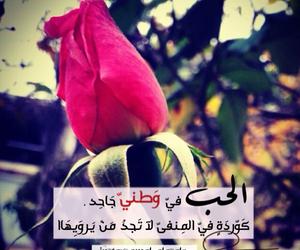 حب, وطني, and الوطن image