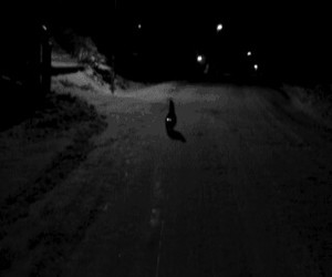 black & white, cat, and night image