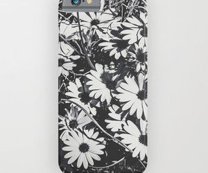 case, daisies, and floral image