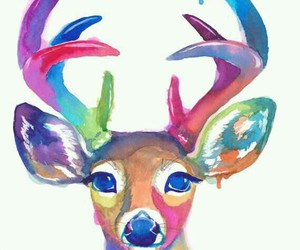 colors, deer, and animal image