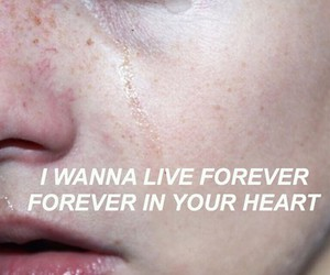 pale, grunge, and heart image