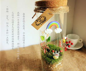 gift, grass, and jar image