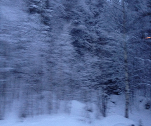 sweden, snow, and winter image