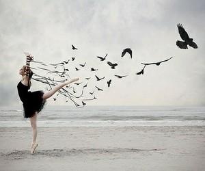 bird, ballet, and dance image