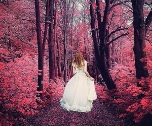 pink, forest, and girl image