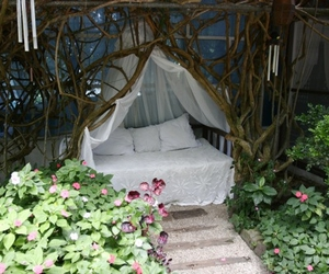 bed, nature, and garden image