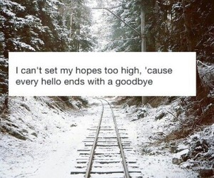goodbye, hope, and quote image
