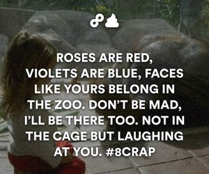 funny, zoo, and rose image
