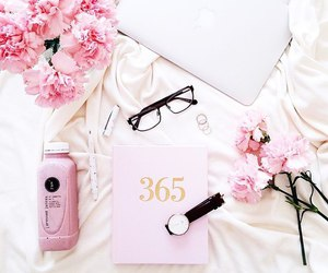 flowers, pink, and glasses image