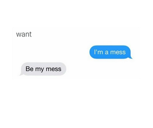 mess and love image