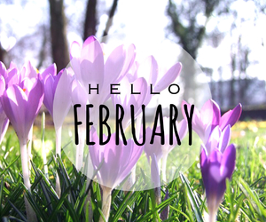 february, flowers, and hello image