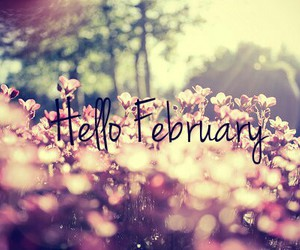 flowers, february, and hello image